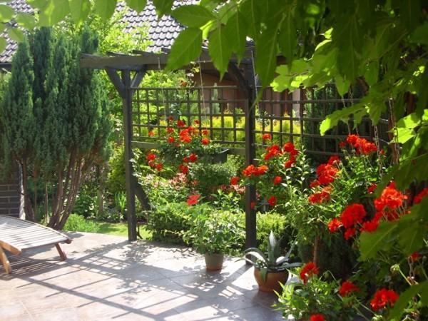 ogród aranżacja