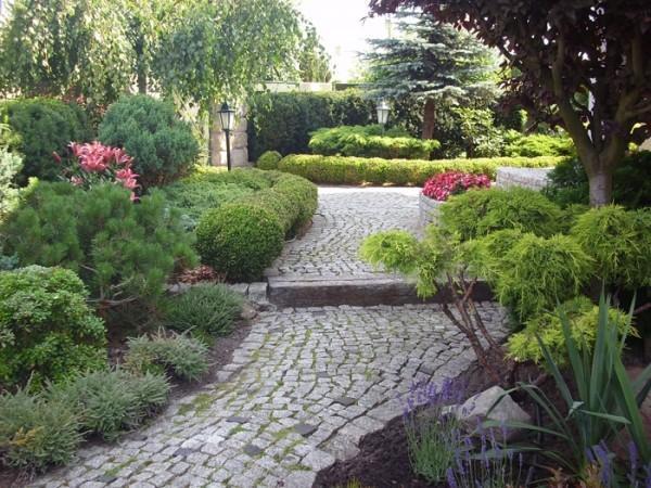 ogród dróżka